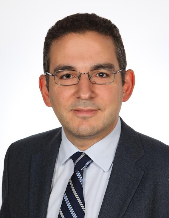 Stylianos-Ioannis G. Koutnatzis