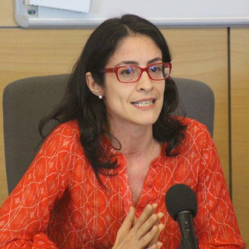 Luísa Netto