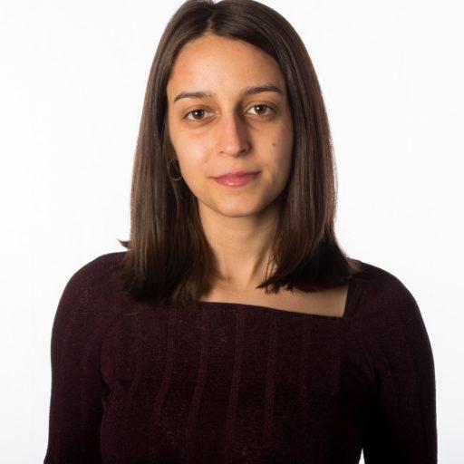 Carmen Villarroel Luque